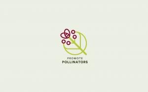 Graphic design for Promote Pollinators