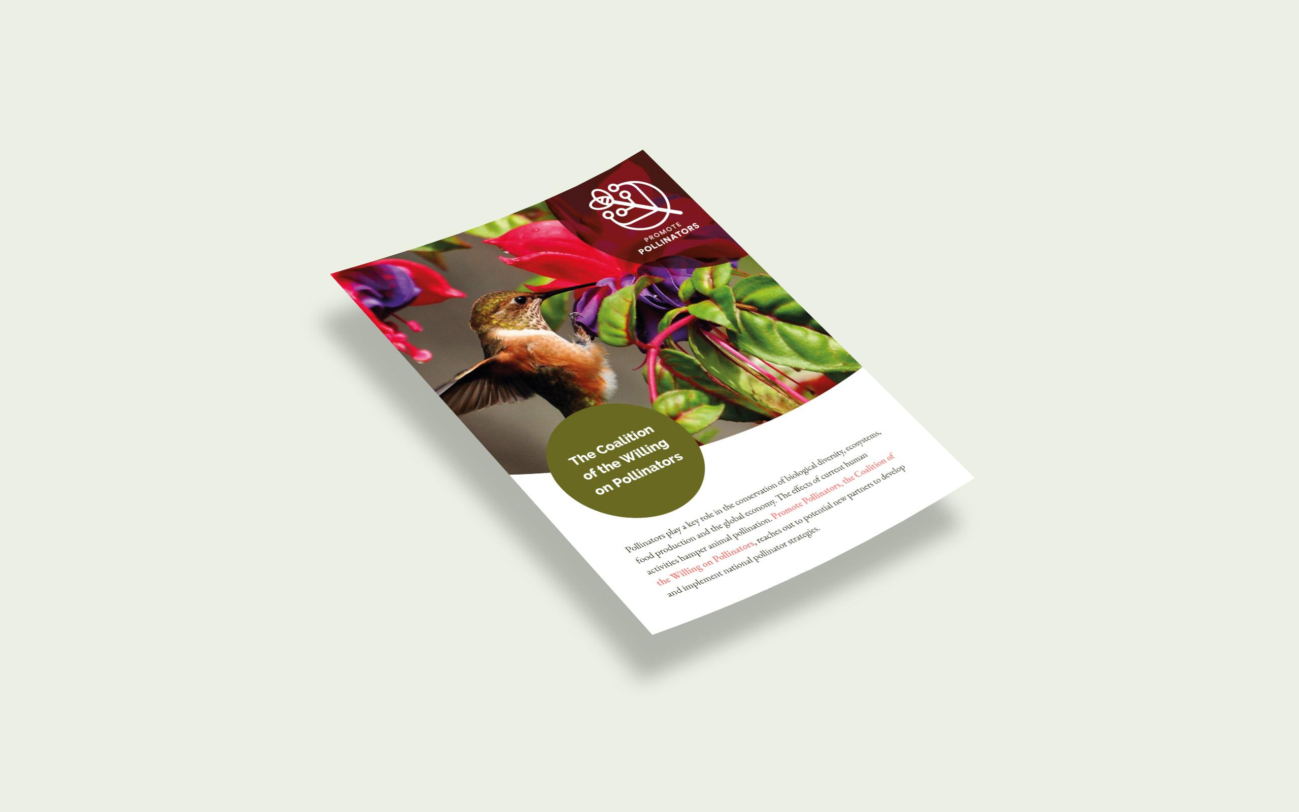Design Flyer for Promote Pollinators